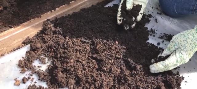 Вот так выглядит готовый компост, у него рыхлая структура, приятный запах влажной земли.