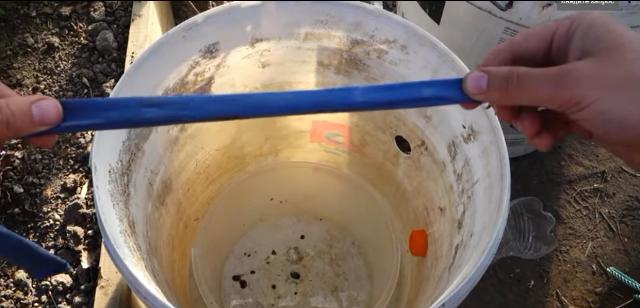 Vyrashchivanie ogurcov na vode